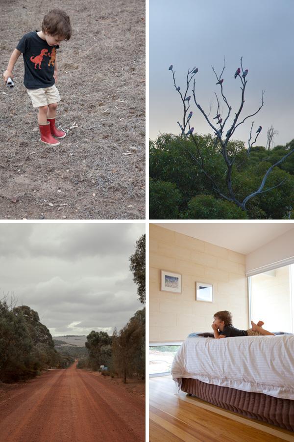 south-australia-luxury-eco-lodge_1