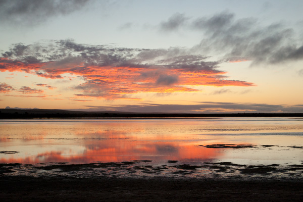 baird-bay-south-australia_sunset