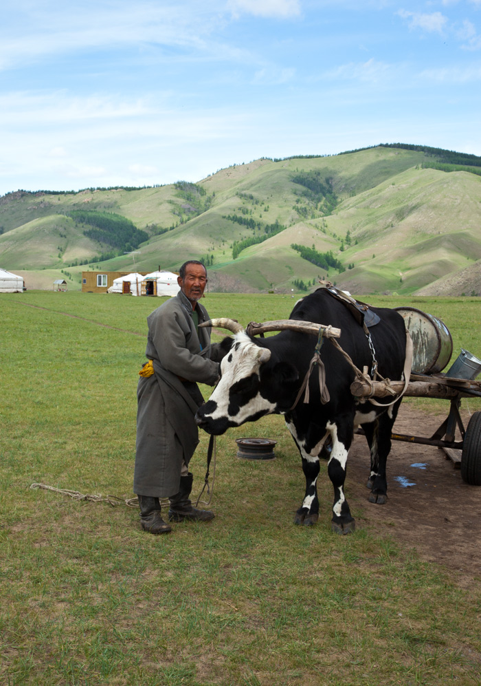 mongolia_nomads