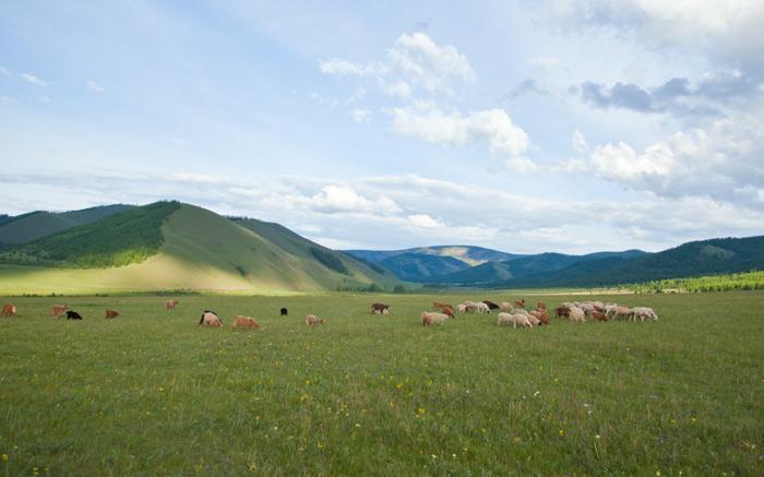 mongolia_nomads_2